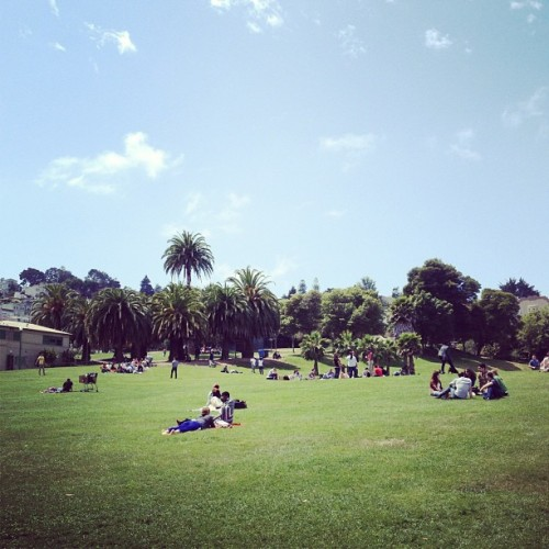 After the rain #dolorespark #sf #sundayfunday