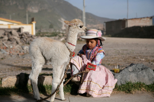 A young Peruvian girl rests with her baby alpaca named Carmelo near Colca Canyon, Peru on May 6, 2009.