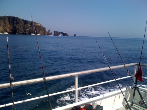 Disregard prom, go deep sea fishing for seven hours. Yeeahhhhhhhh!!!