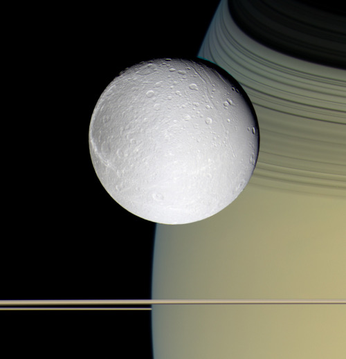 space-pics:  Dione against Saturn and its rings. This isn't CGI, it's real.http://space-pics.tumblr.com/