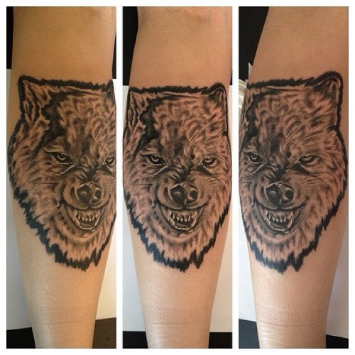 Timber wolf #nofilter #tattoo #tattoos #toronto #torontoart #torontotattoo #follow #girlswithtattoos #wolf #real #realism #portrait #tattooshop #tattooflash #tattooartist #art #artist #artoftheday #oldschool #oldschooltattoo #photooftheday #picstitch