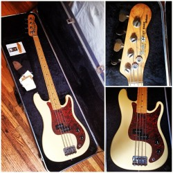 My 1981 Fender Bullet Bass