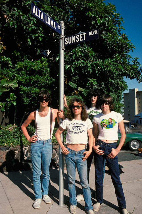 The Ramones on Sunset Blvd, 1978 (x)