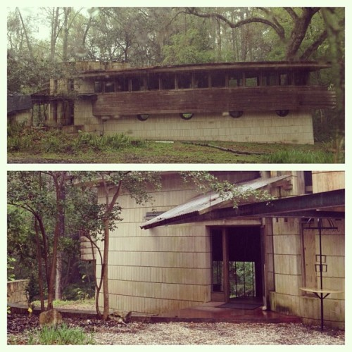 Florida's ONLY Frank Lloyd Wright house still sits in #Tallahassee. Here it is, appropriately, in the rain -Lewis House #mbtrail #march #architecture #2013 #florida #houses @nolejess @carlos_a_carrillo @ralphrosado