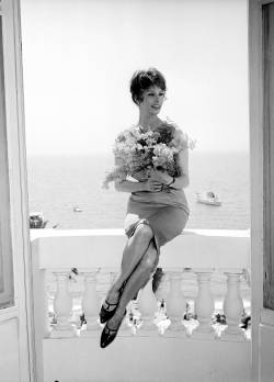 theniftyfifties:  Sophia Loren at Cannes, 1959.