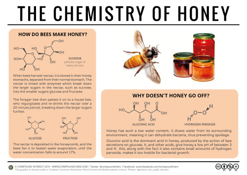 currentsinbiology:  compoundchem:  Honey is a food oddity in that it doesn't spoil. Here's the chemistry behind why, as well as an explanation of how bees make honey: http://wp.me/p4aPLT-qn  Good stuff!   The third best vomit I know!