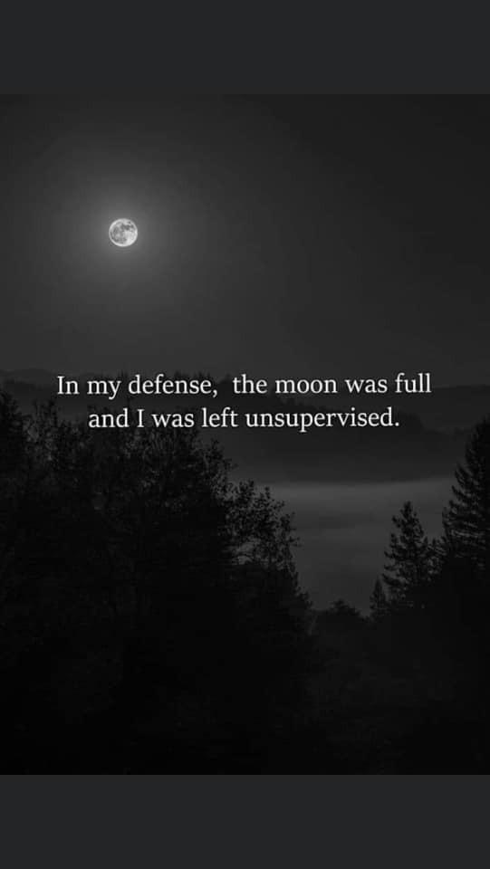 #quotes#moon#full moon#life#night#wild#forest#dark#trees#stars