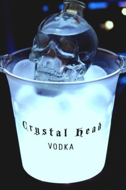Vodka Skull on We Heart It
