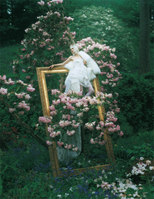mme-edna:  Dream and Magic Stella Tennant by Tim Walker for Vogue Italia August 2007