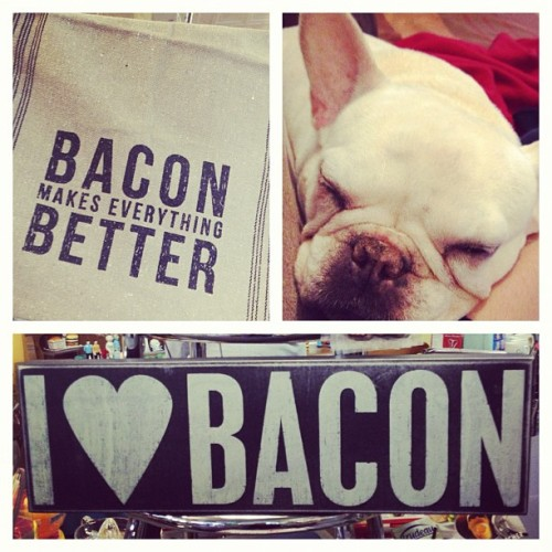 My pig dog Bunni aka Bacon to my father in law (via jdeugenio on Instagram)