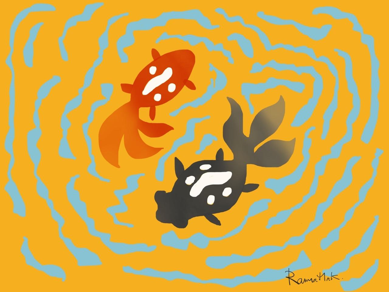 A pair of Goldfish (Carassius auratus)
