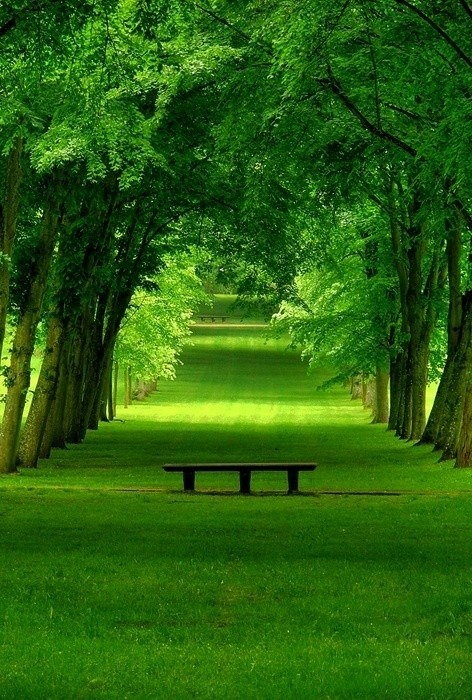 secretdreamlife:  Park in Chamrande, Paris http://secretdreamlife.tumblr.com