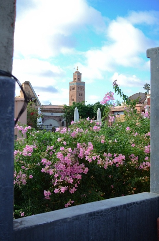 | ♕ |  View from terrace - Riad Alamir in Marrakech  | by © Audrey