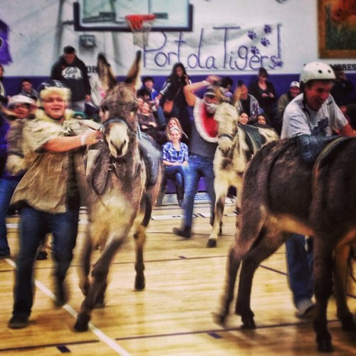 Donkey Basketball. Fast. Furious. Crazy!  (at Portola High School)