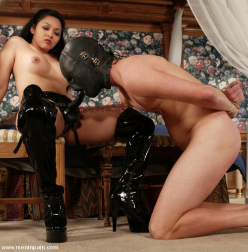 peggedforafemdom:  Pegging, strapons and little bdsm. Every sluts dream :) http://peggedforafemdom.tumblr.com