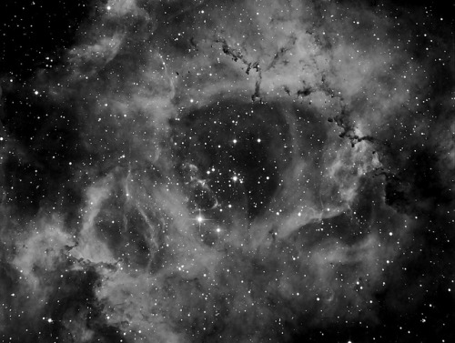 The Rosette Nebula - Hydrogen Alpha by Peter the Fraudfinder on Flickr.