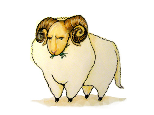 Ramsey Ram Ramsey Ram silently judges you.  Watercolour pencils and black gel ink pen
