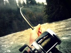Can't wait for it to be summer up here so I can go camp and fish