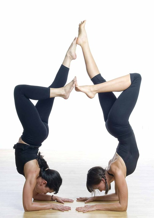 Yoga Pose of the Day: Pincha Mayurasana or Forearm Stand with a friend! 1. Perform a modified Adho Muhka Svanasana at your yoga wall, with your palms and forearms on the floor. Your fingertips should be right at the base of the wall, and your forearms parallel to each other at shoulder width. This pose isn't quite as scary as Adho Mukha Vrksasana; it has a firmer base of support, and the head isn't as far away from the floor. But it can still be somewhat intimidating. To ready yourself for and secure yourself in this inversion, firm your shoulder blades against your back torso and pull them toward your tailbone. Then rotate your upper arms outward, to keep the shoulder blades broad, and hug your forearms inward. Finally spread your palms and press your inner wrists firmly against the floor. 2 Now bend one knee and step the foot in, closer to the wall (let's say the left leg), but keep the other (i.e. right) leg active by extending through the heel. Then take a few practice hops before you try to launch yourself upside down. Sweep your right leg through a wide arc toward the wall and kick your left foot off the floor, immediately pushing through the heel to straighten the leg. Hop up and down like this several times, each time pushing off the floor a little higher. Exhale deeply each time you hop. 3 Hopping up and down like this may be all you can manage for now. Regularly practice your strength poses, like Adho Mukha Svanasana (or the modified version that's the beginning position here), Plank Pose, and Chaturanga Dandasana. Eventually you'll be able to kick all the way into the pose. At first your heels may crash into the wall, but again with more practice you'll be able to swing your heels up lightly to the wall. 4 If your armpits and groins are tight, your lower back may be deeply arched. To lengthen it, draw your front ribs into your torso, reach your tailbone toward your heels, and slide your heels higher up the wall. Draw the navel toward the spine. Squeeze the outer legs together and roll the thighs in. In Pincha Mayurasana your head should be off the floor; hang it from a spot between your shoulder blades and gaze out into the center of the room. 5 Stay in the pose 10 to 15 seconds. Gradually work your way up to 1 minute. When you come down, be sure not to sink onto the shoulders. Keep your shoulder blades lifted and broad, and take one foot down at a time with an exhalation. Lift into Adho Mukha Svanasana for 30 seconds to a minute. We tend to kick up with the same leg all the time: be sure to alternate your kicking leg, one day right, next day left.