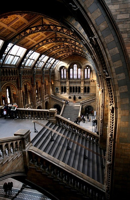 Natural History Museum, London photo via rachel