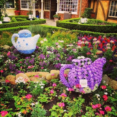 Epcot in Bloom. Teacups in UK #epcot #teacups #UK #disney #flowerandgarden #epcotinbloom