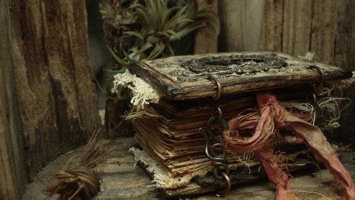 Escrevendo... no livro da vida...