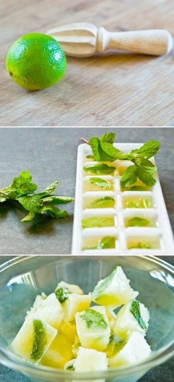 fitnessluvr:  covetcravefancy:  Mint & Lime juice cubes. How cool is this. Great idea from Whole Foods.  Can you say mojito? Oh yeah