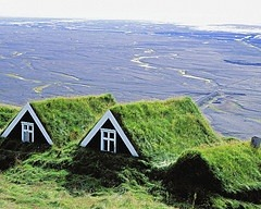 A green roof helps with energy efficiency, reduces run-off after the rain, and more.
