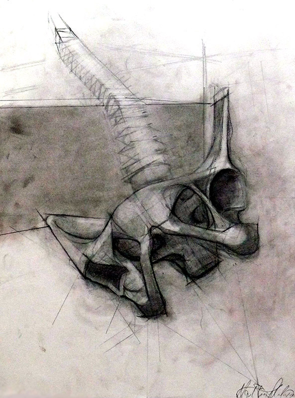 eatsleepdraw:  Spine Study, 2012 Alex Hairspray Charcoal