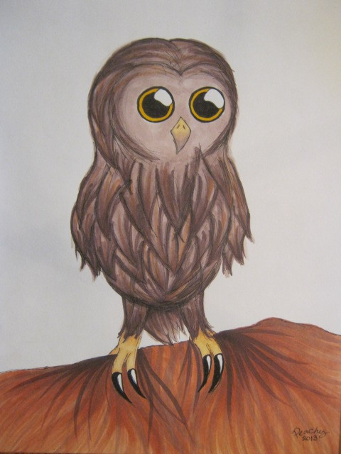 Owls are a lot of fun to draw