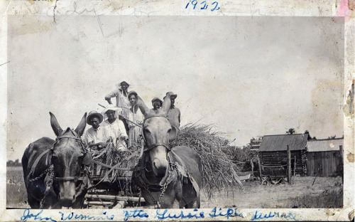 Hay Ride Wichita Falls, Texas, 1922 [Ross Family Album] ©WaheedPhotoArchive, 2013