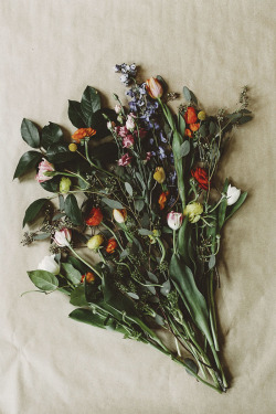 crowcrow:  Floral Arrangements: All & Sundry  Photography: Tomasz Wagner