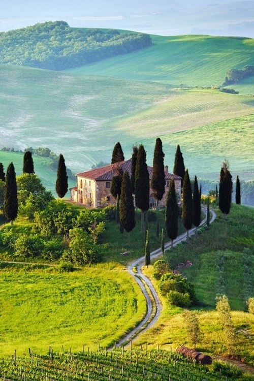 best-of-earth:  Val d' Orcia, Tuscany.