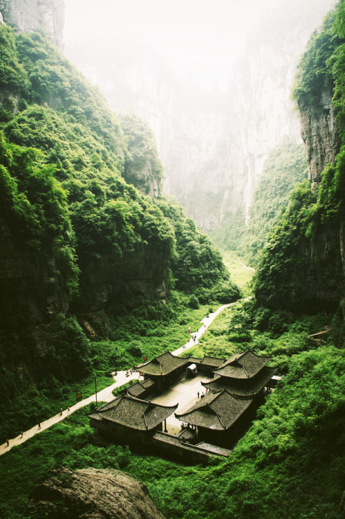 evocativesynthesis:  Chungking, Wulong (by YOU YI)