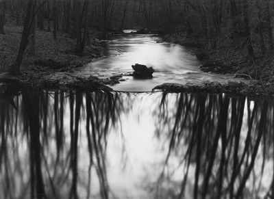 Paul Caponigro (born 1932) Stream, Redding, Connecticut, 1968. Gelatin Silver Print.