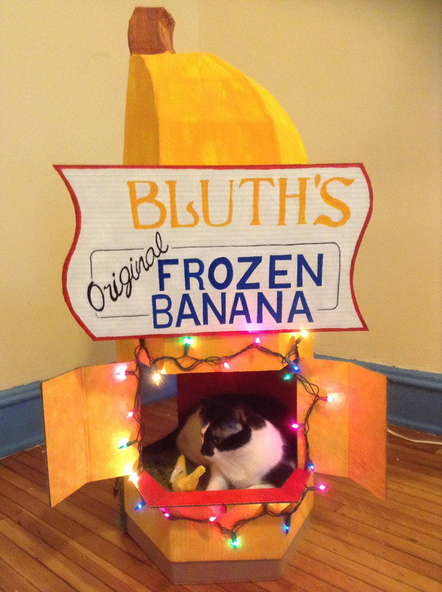 motherjones:  laughingsquid:  Guy Makes a Bluth's Frozen Banana Stand for His Cat Named 'Money'  Perfect.