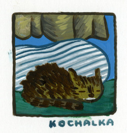This is James Kochalka's Cat! Cats are cool. It's at GR2.