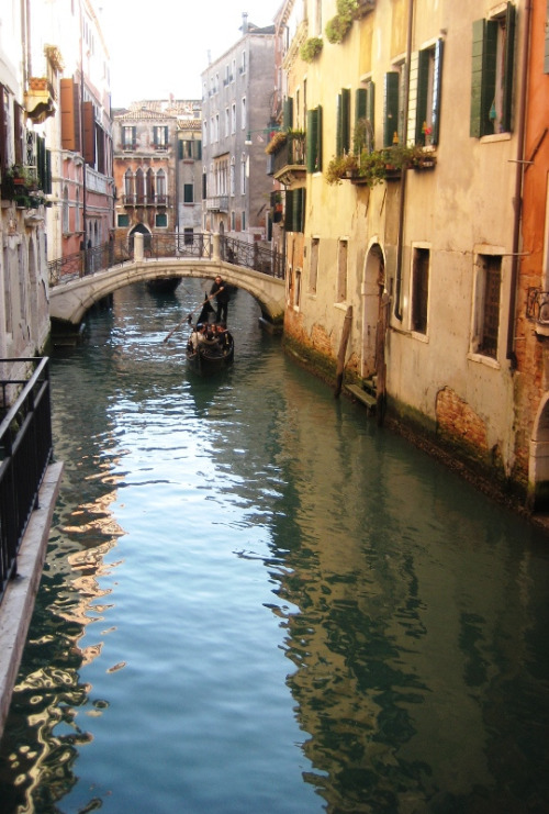 PHOTO of the DAY | January 4, 2013 | Venice canal
