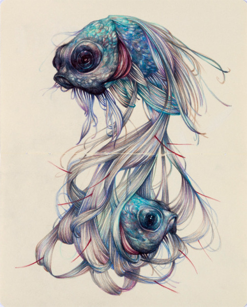 itscolossal:  The colored pencil drawings of Marco Mazzoni.