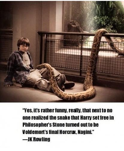 "sinfularmitagehobbitlover:  evansoul09:  I don't know if this is true or not? Some say no, some say WHAT? And some like me just say, ""Well then…""  WHAT?!   OH MY GOOOODDDDD"