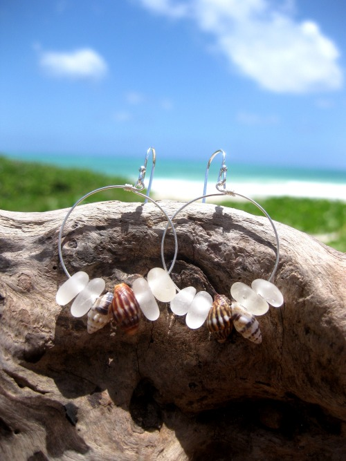 Hawaiian Clear Beach Glass Surrouding 2 Pairs Matching Small Hawaiian Tidal Shells on 925 Sterling Silver Circular Wire Small Hoop Earrings Handmade with Aloha!  …..surfer chic…..