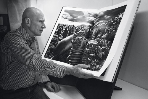 The 704-page two-volume collection of black-and-white photos depicts…a 47-day journey tracking 7,000 reindeer across Northern Siberia and a roughly 525-mile hike in the Simien Mountains of Ethiopia.  The massive art edition retails for $9,000, weighs a combined 130 pounds—packaging and bookstand included—and stands nearly four feet tall.  more.