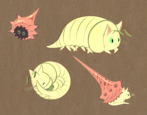 A study of our friend White Cat as a pillbug and hermit crab.