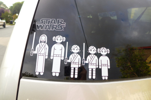 tiefighters:  Star Wars Family Image by cyclotourist