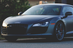 johnny-escobar:  Matte Audi R8