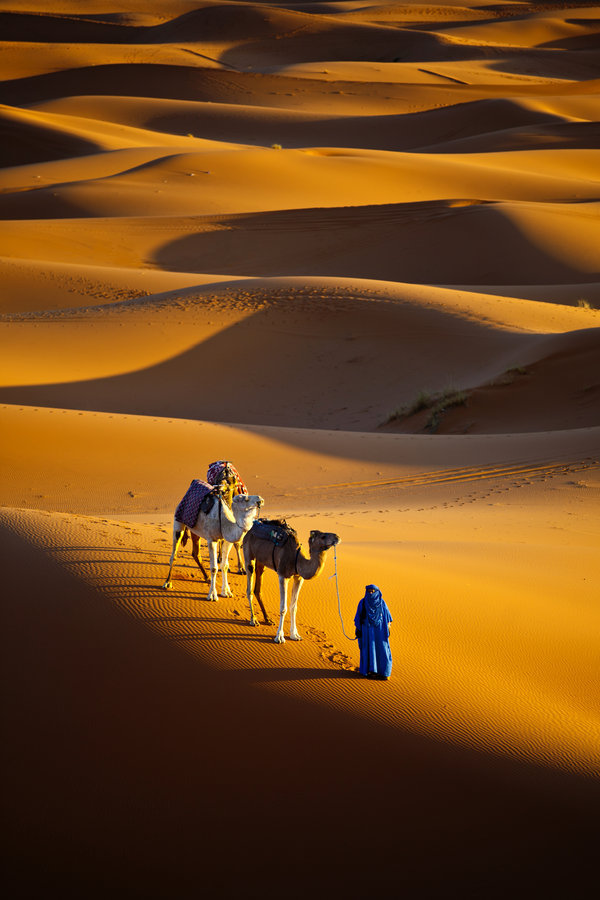 landscapelifescape:  Sahara desert, Morocco Sailing across the sea by gilad