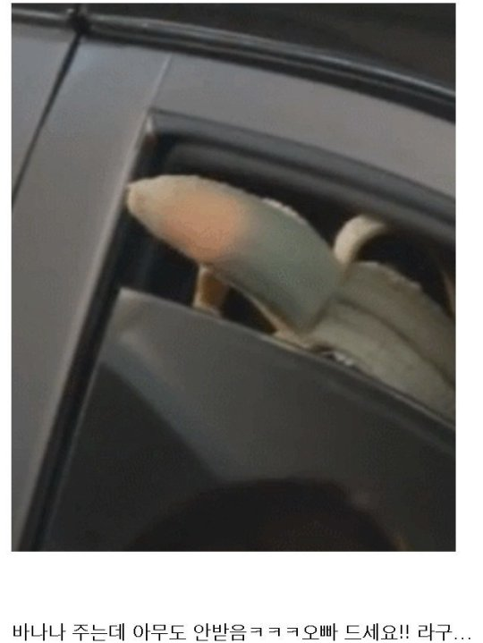 """Taeyang feeding VIPs🍌.Translation: """"He's trying to give out bananas but no one takes it"""" #taeyang#bigbang #i would also not take it  #why did he PEEL it  #?  #banana=good but peeling it is quite unnecessary  #like how is someone going to grab that??? #ridongculous"""