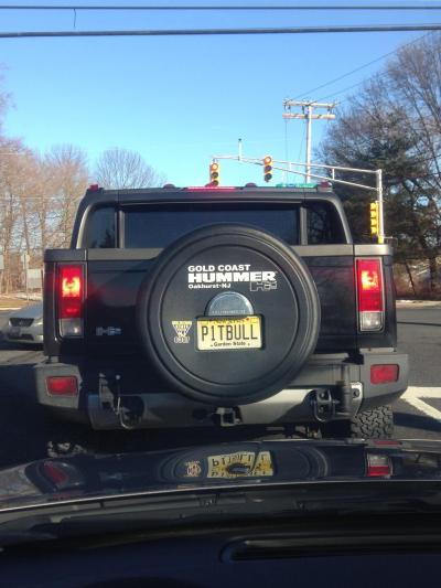 Spotted: NJ 2013 P1TBULL thanks to Kelly! Dog fan or Mr. Worldwide fan?
