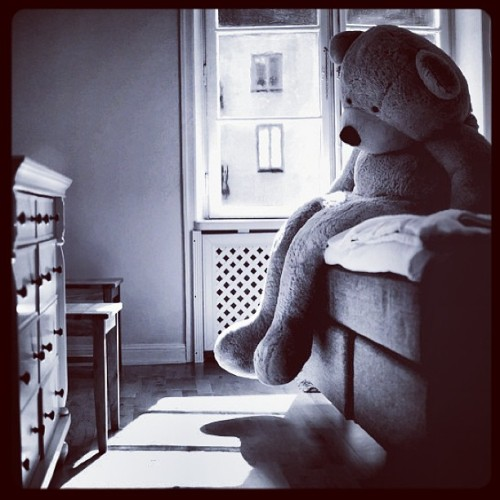 myosciur: #photo#viktoriagarvare#garvare#bear#cute#sad#sadness#fluffy#light#day#morning#lonely#alone#bored#bw#toy