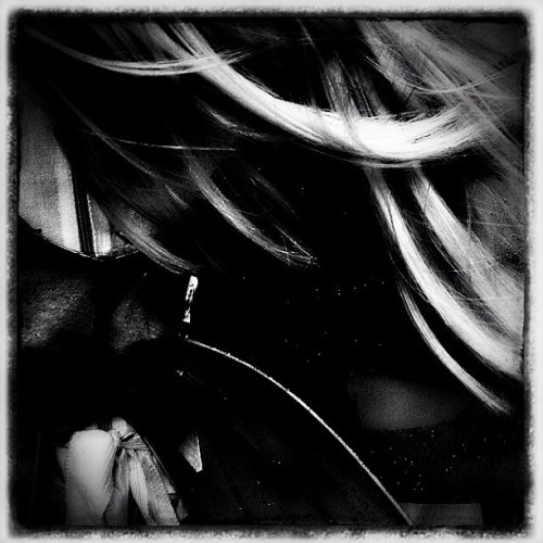 Riding on the wind. #wind #monochrome #b&w #dark